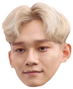 Star Cutouts Chen EXO SINGLE MASK