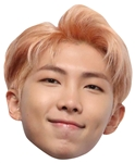 Star Cutouts RM aka Rap Monster (BTS KPop) Kim Nam-joon SINGLE MASK