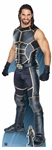 Lifesize Seth Rollins World Wrestling Entertainment WWE