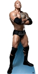 The Rock Arms folded 'Do you like pie?' Dwayne Johnson World Wrestling Entertainment WWE Lifesize Cardboard cutout