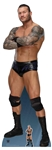 Star Cutouts WWE Randy Orton World Wrestling Entertainment