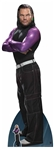 Star Cutouts WWE Jeff Hardy World Wrestling Entertainment Lifesize Cardboard Cutout