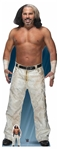 Star Cutouts WWE Matt Hardy World Wrestling Entertainment Lifesize Cardboard Cutout