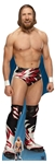 Star Cutouts WWE Daniel Bryan World Wrestling Entertainment