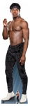 Star Cutouts WWE Velveteen Dream  World Wrestling Entertainment Lifesize Cardboard Cutout