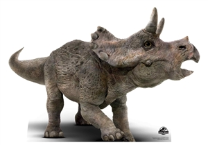 Lifesize Cut Out OOfficial Jurassic World Baby Triceratops Dinosaur