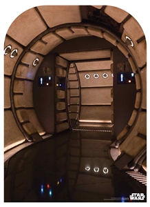 SC1472 Millennium Falcon Corridor Child Size Star Wars Photo Backdrop Perfect for Star Wars Fans Height 130cm Width 94cm
