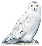 SC1476 Hedwig Star Mini Harry Potter Lifesize Cardboard Cutout Perfect fun for Potter Fans  Height 74cm