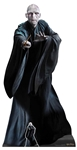 SC1481 Star Cutouts Lord Voldemort He Who Must Not Be Named Perfect for Fans Height 184cm
