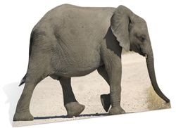 Baby African Elephant Lifesize Cardboard Cutout