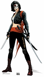 Katana (Suicide Squad Comic Artwork)