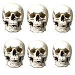 SMP147 Star Cutouts Skull Six Pack Face Mask Halloween, Horrror, Monster Party and Event Great Talking Point for Friends, Fans and Family