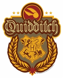 Quidditch Crest Wall Cut Out HARRY POTTER WIZARDING WORLD