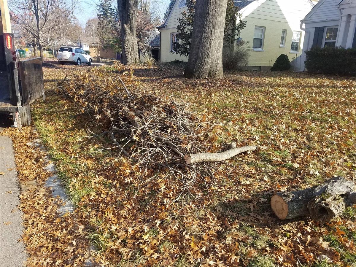 Junk Yards Dayton Ohio >> Brush Removal