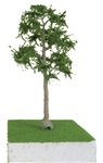 JTT 92416 O Cypress Trees Pro Elite 8""