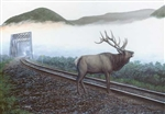 Train Enthusiast 48856 Elk Tracks Puzzle 550 Pieces