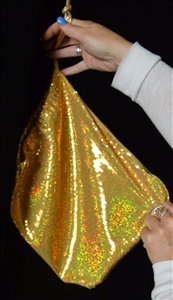 B330GD - Extra Large Sequin Money Bag (Gold)