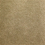 Medium Neutral Backless Carpet