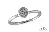 Sparkling  diamonds in 14K white gold ring.
