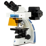 EUROMEX trinocular microscope for fluorescence