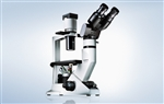 Olympus CKX31 inverted microscope