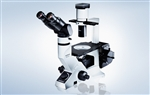 Olympus CKX41 inverted microscope
