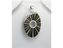 Web Design Shell and Sterling Silver Pendant with 16 Sterling Silver Snake C...