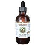 Black Radish Alcohol-FREE, Dried Root Glycerite Liquid Extract - Hawaii Pharm 2 fl oz (0.36 lbs)