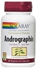 Andrographis Extract - Solaray 300 mg - 60 caps (0.10 lbs)