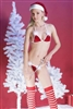 Miss Santa Bra Set Christmas * 3109
