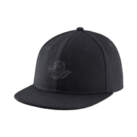 Oregon Ducks Nike Authentic Fitted Hat Black/Tonal