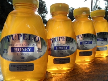 case 12ct Raw Tupelo Honey 1-lb bottle.