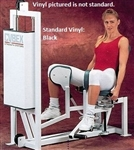 Cybex Galileo Hip Abduction/Adduction Image