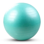 French Fitness Anti Burst Stability Exercise Ball 55cm Image