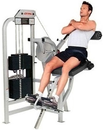 Life Fitness Pro / Pro1 Back Extension (Remanufactured)