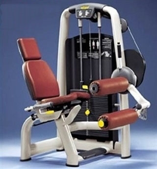 Technogym Selection Seated Leg Curl Image