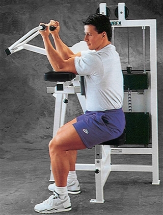 Cybex Classic Bicep Curl Image