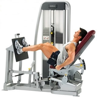 cybex eagle leg press 11040 fitness superstore. Black Bedroom Furniture Sets. Home Design Ideas