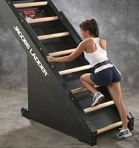 Jacobs Ladder Exercise Machine Fitness Superstore