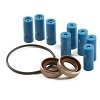 3430-0381 Hypro Super Roller Repair Kit for Hypro 7560 Series 8-Roller Pump, Includes 8 Super Rollers, 1 O-Ring Gasket and 2 Viton Seals