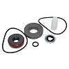 RK-BAC-75-HYD-310 (41379) Ace Pumps Repair Kit For 310 Series Motor