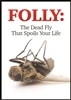 Folly: The Dead Fly That Spoils Your Life