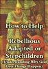 How to Help Rebellious Adopted or Stepchildren