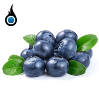 Tasty Blueberry Flavored High PG Vape Juice - 10mL eLiquid Bottle | Vapor Lounge®