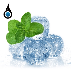 Minty Cool Menthol eJuice - 10mL Premium Flavored High PG Vape eLiquid | Vapor Lounge®