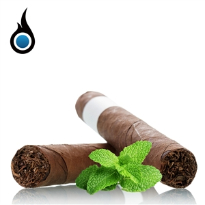 Portal Blend Menthol Flavored eLiquid - Premium High PG Vape Juice | Vapor Lounge®
