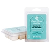 Youngevity Clear Your Sniffer Essential Oil Soy Wax Melts