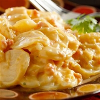 Youngevity Au Gratin Potatoes