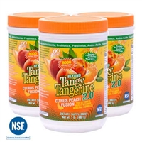 youngevity BTT 2.0 Citrus Peach Fusion Canister 3Pack beyond tangy tangerine amazon