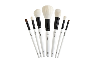 Makeup Brush Starter Sets Online